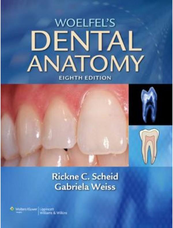 Woelfel's Dental Anatomy, 8e